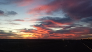 20171106_drive to Lubbock, TX (14)